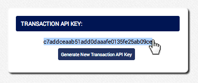 Copy the Transaction API Key and use where applicable